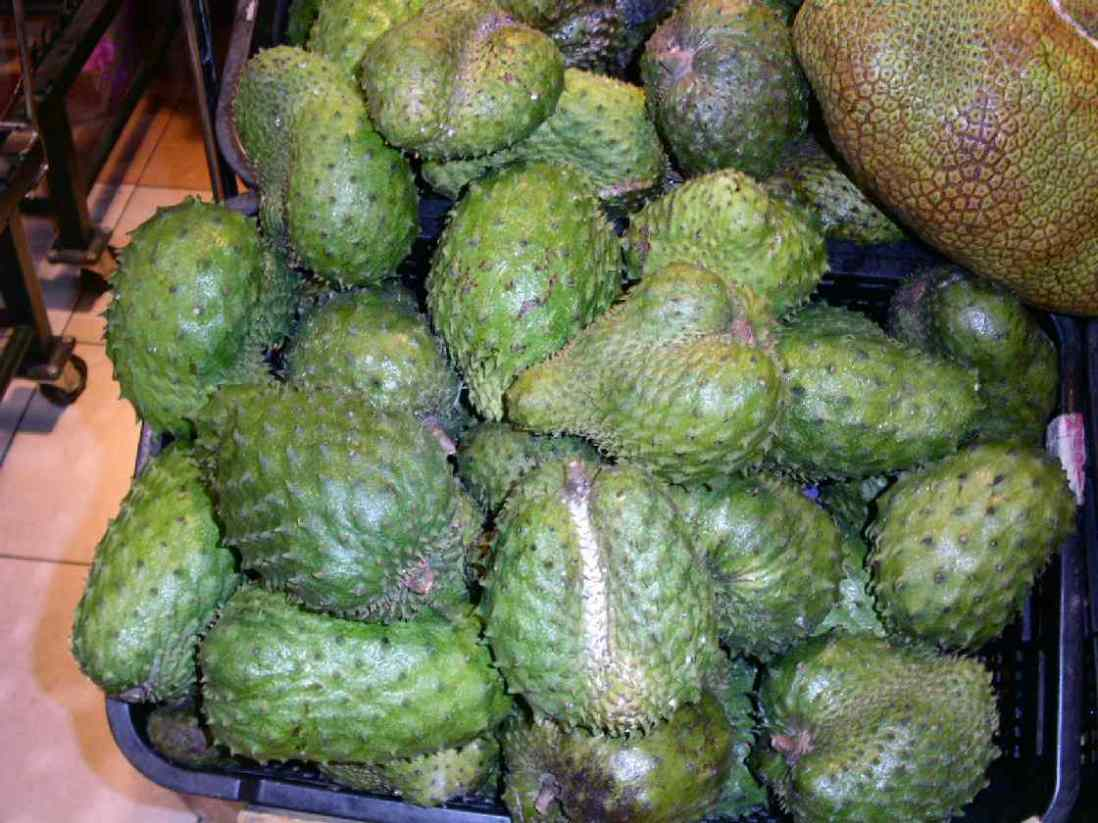 Tropical Fruits From The Pacific Area And Their